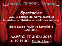 SPECTACLE NOTRE-DAME 2015-06-27 SMALL